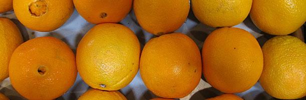 oranges-389674_1920